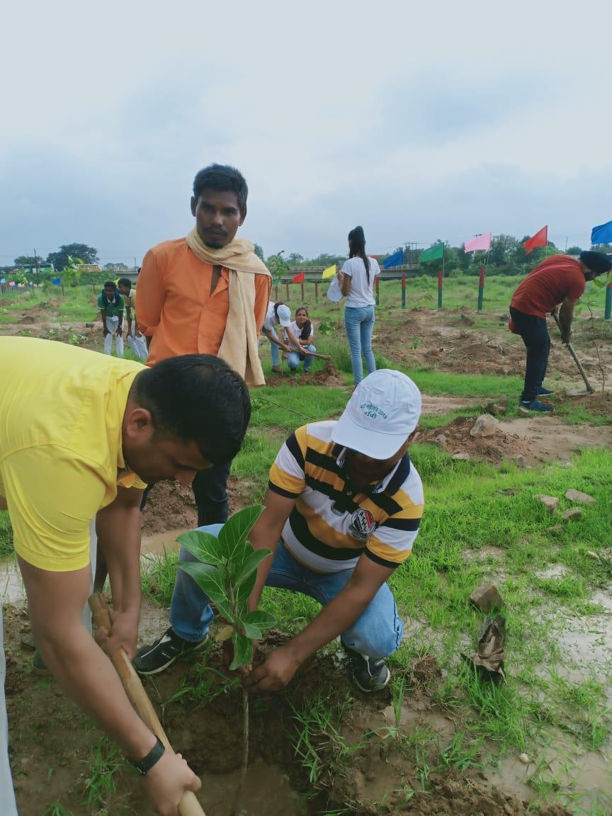 नदी महोत्सव सह वृहद वृक्षारोपण 2019